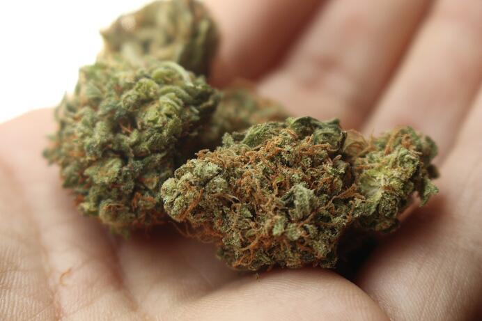 imagen sobre como saber si soy adicto a la marihuana